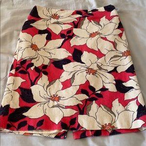Ann Taylor pencil skirt (0p)